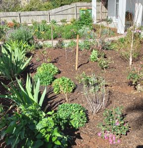 Fine Mulch for Gardens Toowoomba Zilch Waste Recyclers